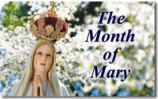 Image result for may month of mary