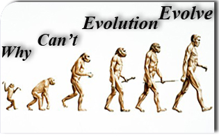 Why Can't Evolution Evolve