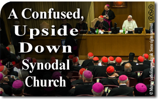 "A Confused, Upside Down ""Synodal Church"""