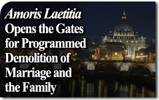 Amoris Laetitia Opens the Gates of the Church and Society for a Programmed Demolition of Marriage and the Family