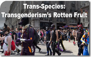 Trans-Species: Transgenderism's Rotten Fruit