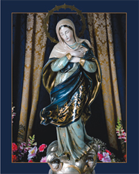 Immaculate Conception Our Protection