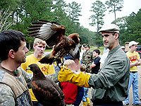 Many participants had the opportunity to hold and pet these magnificent birds.