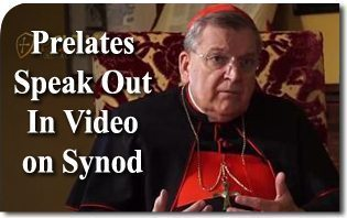 Prelates Speak Out In Video About Synod