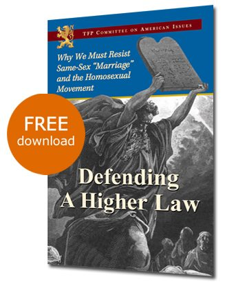 Defending a Higher Law - Free online version