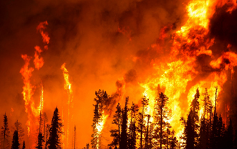 How Do You Stop Wildfires When Human Efforts Fail? A Lesson From the Peshtigo Fire Miracle