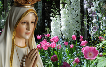 The Marvelous World of Our Lady's Flowers