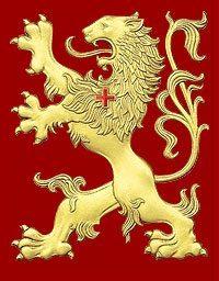 TFP Lion
