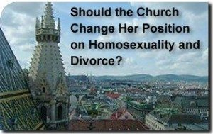 Should the Church Change Her Position on Homosexuality and Divorce?