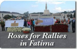 Roses for Rallies in Fatima
