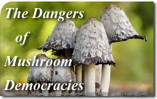 The Dangers of Mushroom Democracies