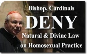 Bishop, Cardinals Deny Natural and Divine Law on Homosexual Practice
