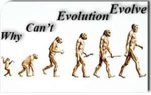 Why Can't Evolution Evolve?