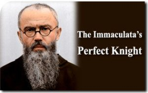 Saint Maximilian Kolbe: The Immaculata's Perfect Knight