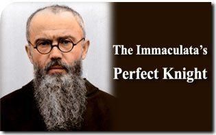 Saint Maximilian Kolbe: The Immaculata's Perfect Knight