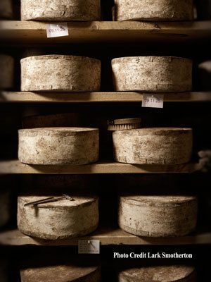 Shelves of Bandaged Cheddar in the cellars at Jasper Hill