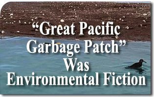 "Expedition Finds ""Great Pacific Garbage Patch"" Was Environmental Fiction"