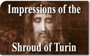 Impressions of the Shroud of Turin