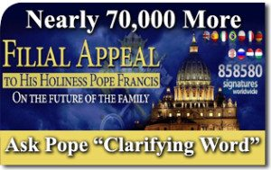 Nearly 70,000 More Ask Pope to Reaffirm Church Doctrine and End Synod Impasse