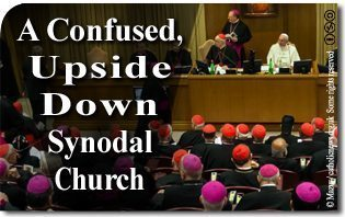 "A Confused, Upside Down ""Synodal Church"""