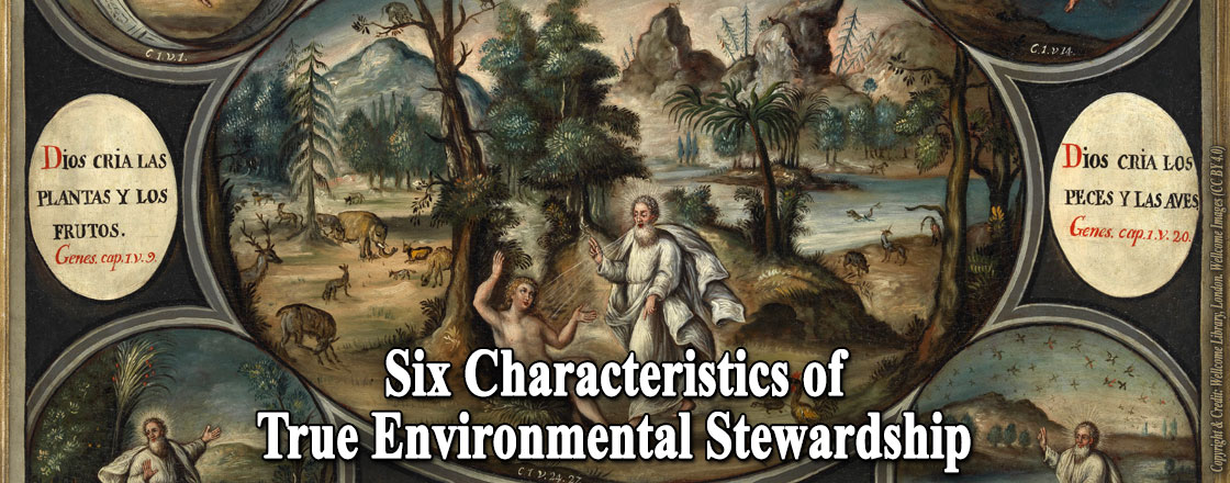 Six Characteristics of True Environmental Stewardship