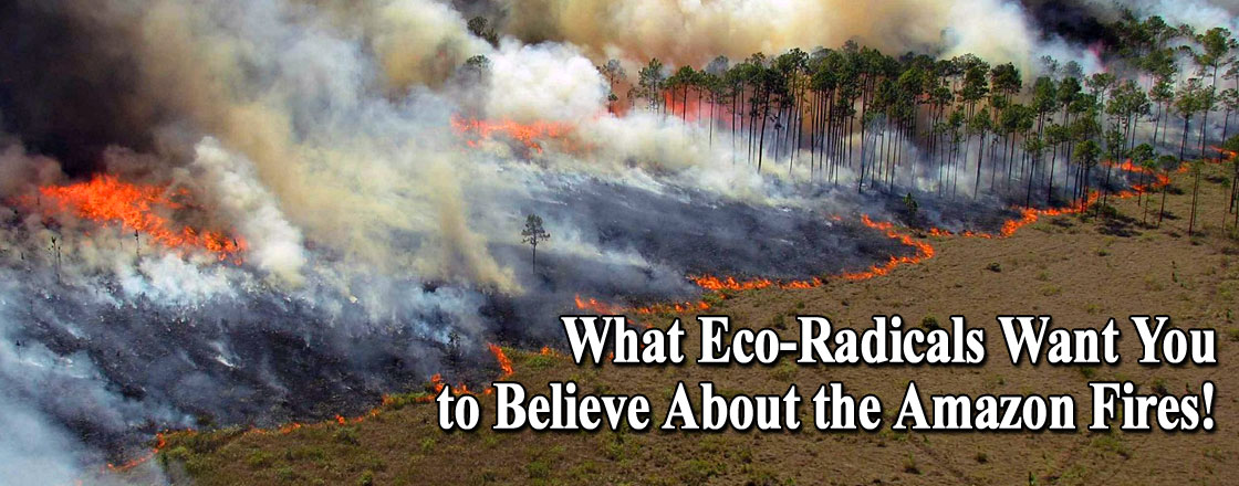 What Eco-Radicals Want You to Believe About the Amazon Fires!